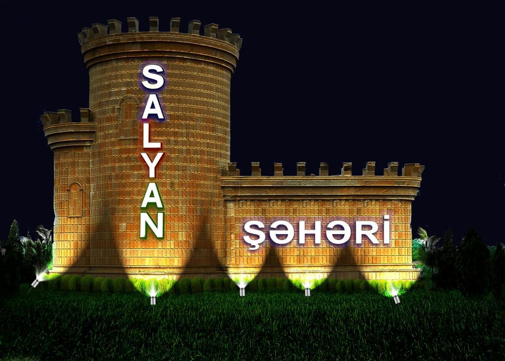 Salyan district