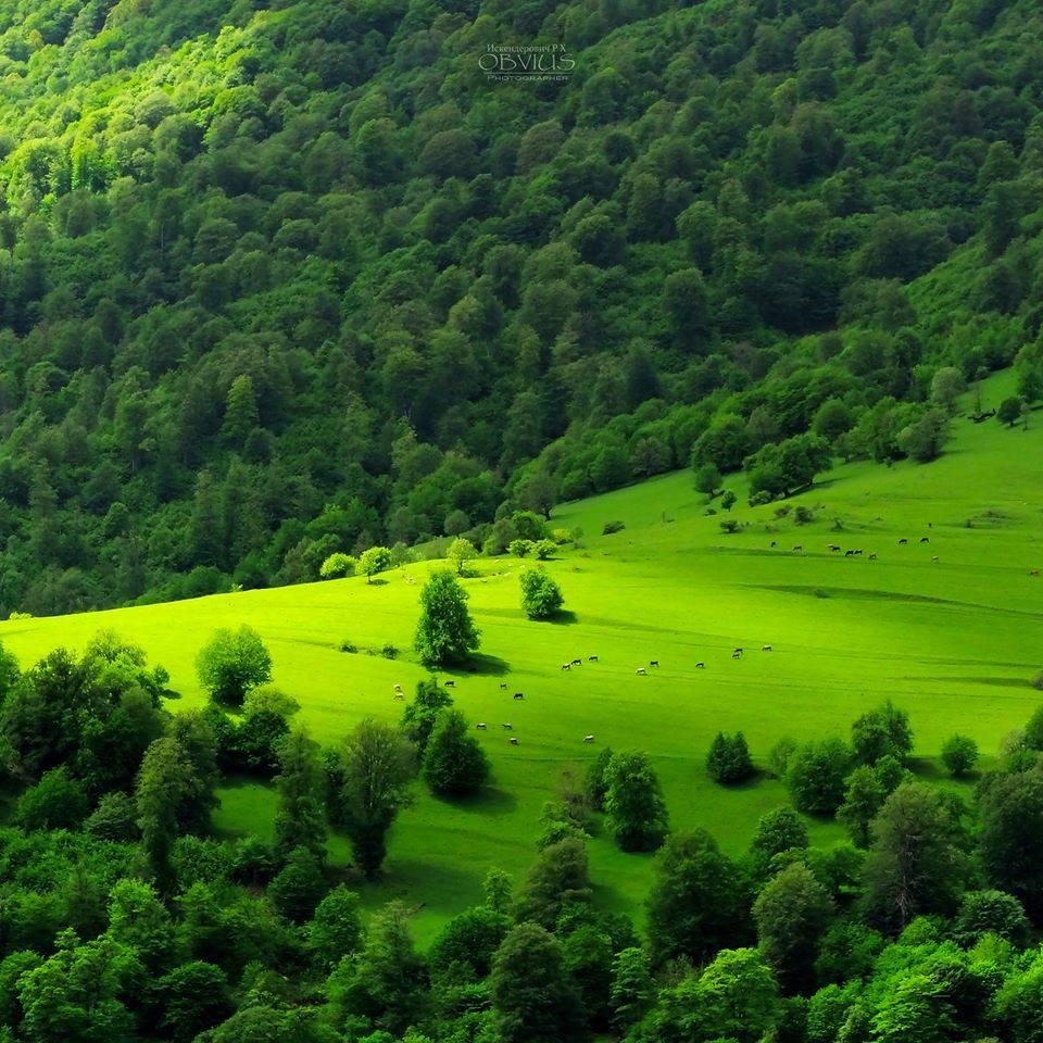 Dashkesan district